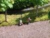 Legoland-2010-029